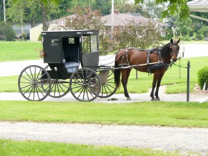 Young @ Heart - 9th Annual Amish Dinner @ Esther's near Shipshewana